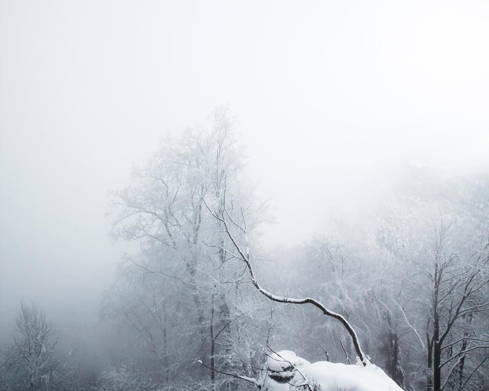 frozen_Nadine-Mojado_4
